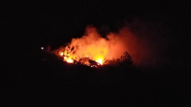 Adanadaki orman yangını kontrol altına alındı