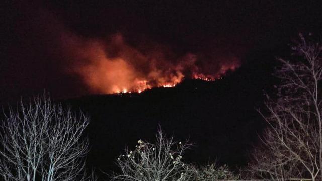Giresunda orman yangını