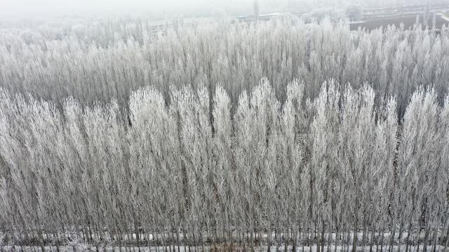 Doğuda dondurucu soğuklar etkisini sürdürüyor