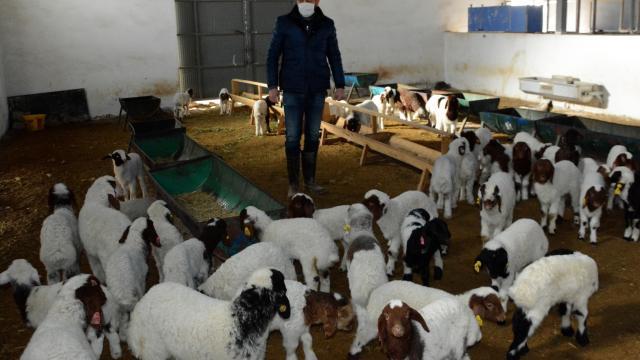 Devlet desteğiyle sürüsünü büyüterek süt sağım tesisi kurdu