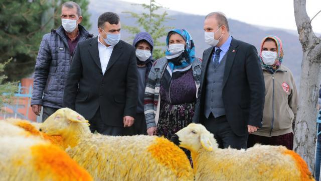 Aksaray Valiliği trafik kazasında koyunları telef olan Şerife nineyi sevindirdi