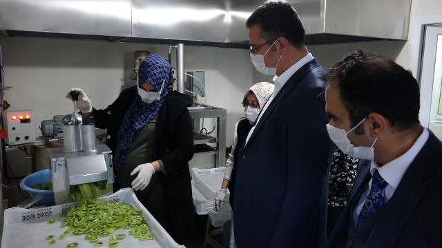 Orduda kurulan meyve sebze işleme tesisi kadınlar için gelir kapısı olacak