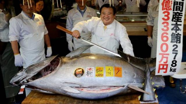 208 kilogramlık orkinos balığı 202 bin dolara satıldı