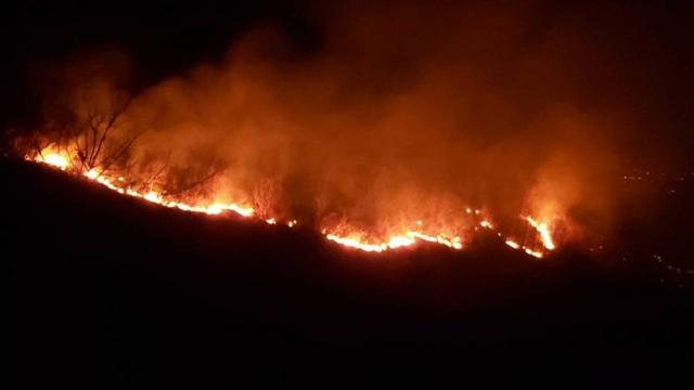 Trabzonda örtü yangını: Müdahale sürüyor