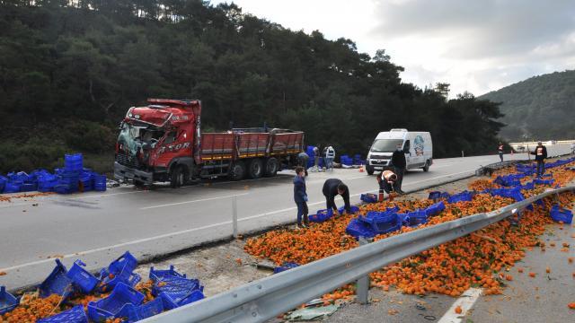 Ezinede mandalina yüklü kamyon devrildi: 2 yaralı