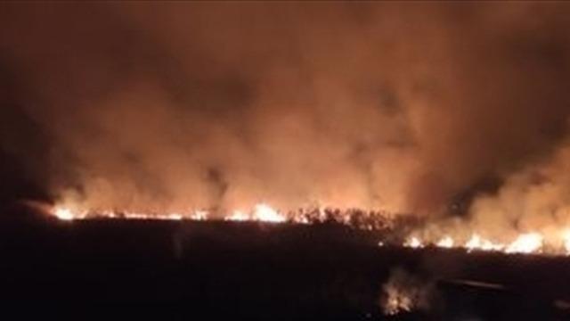 Adanada çalılık alanda çıkan yangın söndürüldü