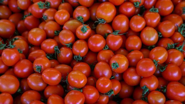 İstanbullular 2020de en çok domates ve patates tüketti