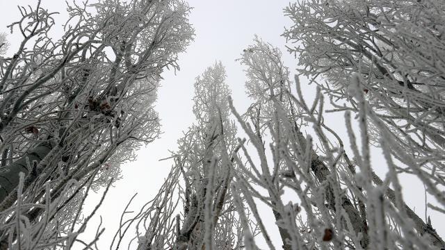 Doğunun dondurucu soğuklarla mücadelesi