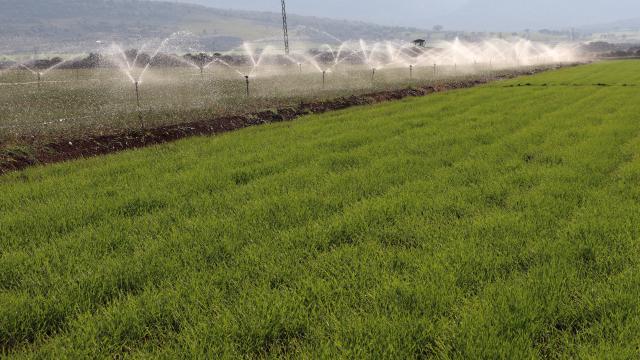 Arabanlı çiftçileri kuraklık endişesi sardı