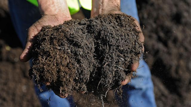Tarım Krediden rekor: Yaklaşık 1,5 milyon tonluk gübre satışı yapıldı