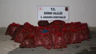 Edirne'de kaçak 1,5 ton kum midyesi ele geçirildi
