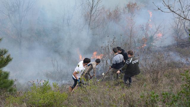 Kastamonudaki orman yangını kontrol altına alındı