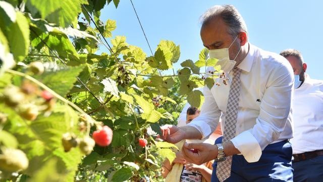 Tarım AŞnin bu yıl ihracat hedefi 1 milyon dolar