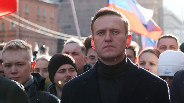 Rusyada Navalnynin kardeşi de gözaltına alındı