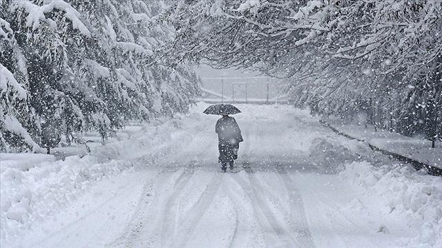 Japonyada kar fırtınası sürüyor: Ölü sayısı 38e yükseldi