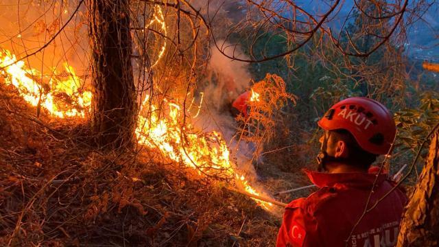 Karadenizde 23 noktada çıkan orman yangınları söndürüldü