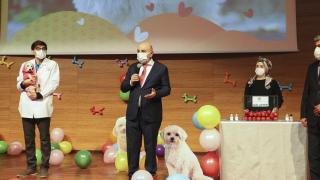 Ankara'da ses telleri kesilen köpekler sahiplendirildi
