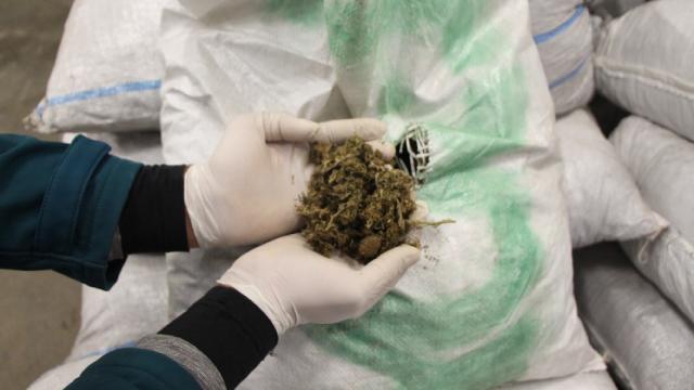 Fasta 1 ton civarı uyuşturucu madde ele geçirdi