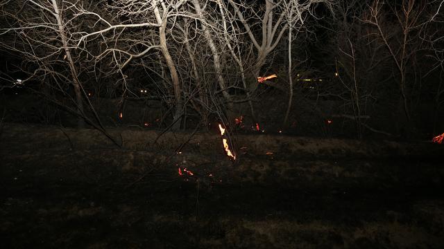 Konyada 4 ayrı noktada yangın