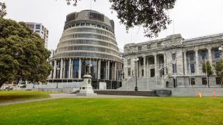 Yeni Zelanda'da parlamento binasına baltalı saldırı