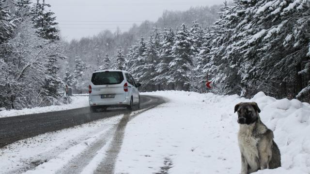 Kütahyada kar yağışı ulaşımı olumsuz etkiliyor