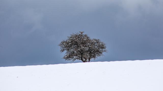 Malatyanın yüksek kesimlerinde kar yağışı etkili oluyor