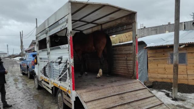 JASAT at hırsızlarının peşinde: 7 gözaltı
