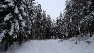 Türkiye'nin en soğuk kenti 'Bolu' oldu