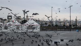 İstanbul'da kısıtlamaya genel olarak uyuluyor