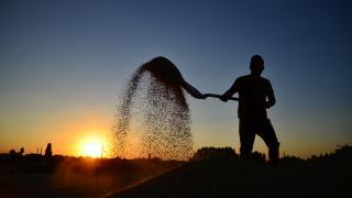 Çiftçilere verilen gübre destekleri iki katına çıkarıldı
