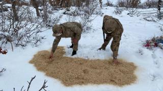 Jandarma yaban hayvanlarını unutmadı