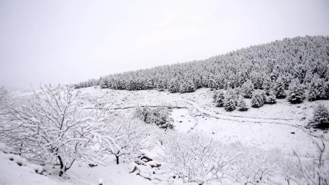 Kahramanmaraşta kış
