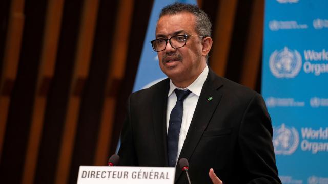 DSÖ Direktörü: Koronavirüs salgını bitmekten çok uzak