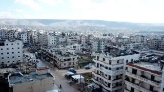 Afrin'in zeytin dalları