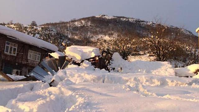 Zonguldakta kar nedeniyle ahırın damı çöktü: 2 hayvan telef oldu