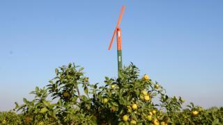 Çiftçiler dona karşı pervaneli önlem aldı