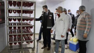 Antalya'da gıdalar mercek altında