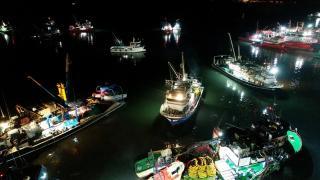 Yasaklı alan dışındaki İğneada'da tekneler hamsi peşinde