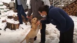 Başı plastik boruya sıkışan köpeği vatandaşlar kurtardı