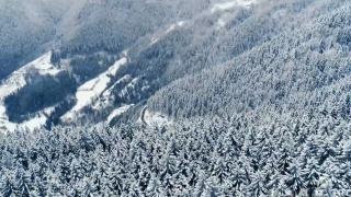 Kafkasör Yaylası kış manzarasıyla büyülüyor