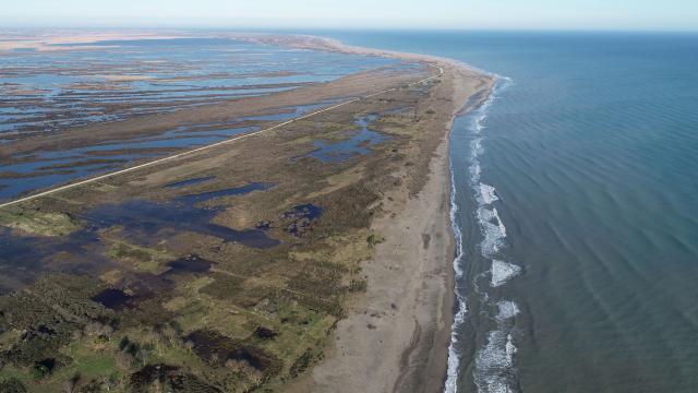 Karadenizin tuzlu suyu Kızılırmak Deltasını tehdit ediyor