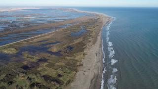 Karadeniz'in tuzlu suyu Kızılırmak Deltası'nı tehdit ediyor