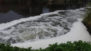 Büyük Menderes Nehri'nde suyun rengi değişti