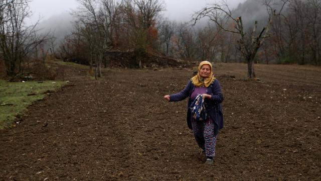Kastamonuda yıllardır atıl kalan tarlalar yaban hayvanları için ekildi