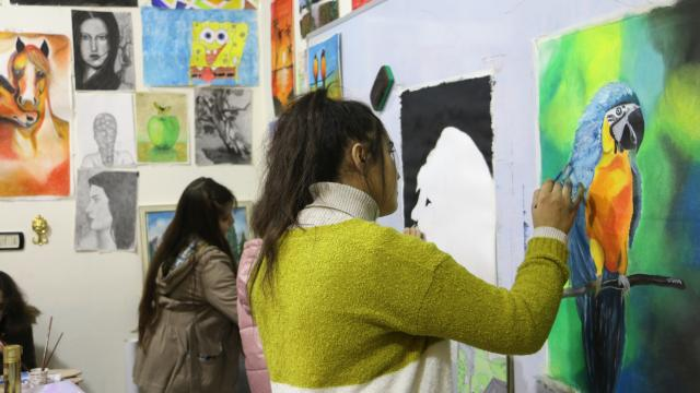 Afrinde YTB iş birliğinde Anadolu Kültür Merkezi açıldı