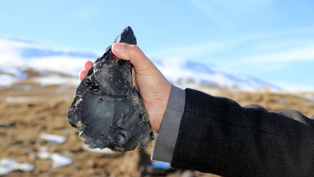 Erciş'te milattan önce 315 bin yıllık el baltası bulundu