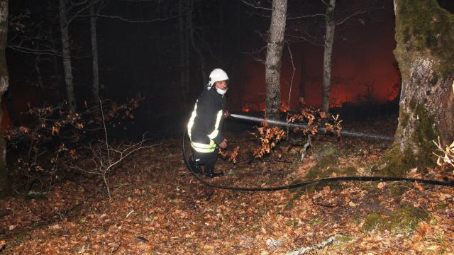 Amasyada çıkan orman yangını söndürüldü