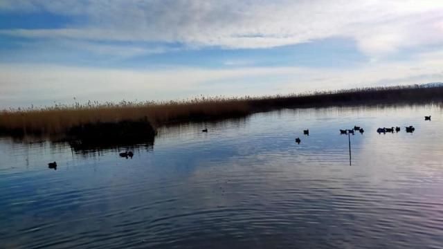 Gala Gölü Milli Parkında avlanan 2 kişiye 160 bin 930 lira ceza verildi