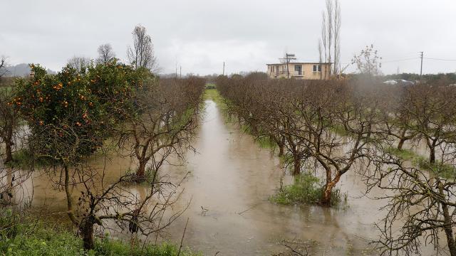 Muğlada tarım arazileri su altında kaldı