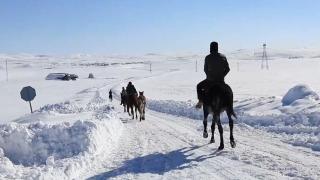 Atlar kar üstünde yarışlara hazırlanıyor